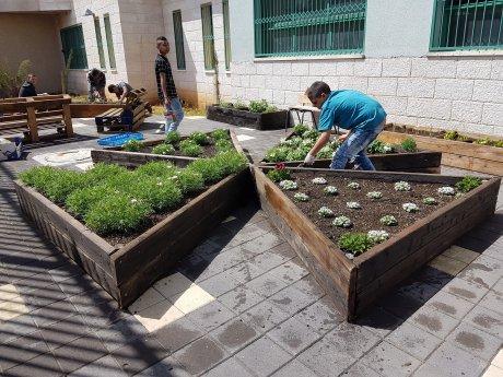 Horticultural gardening