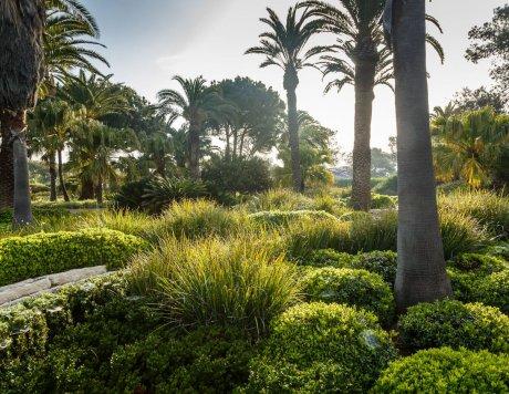 Ramat Hanadiv Gardens, Zichron Yaacov, Israel.