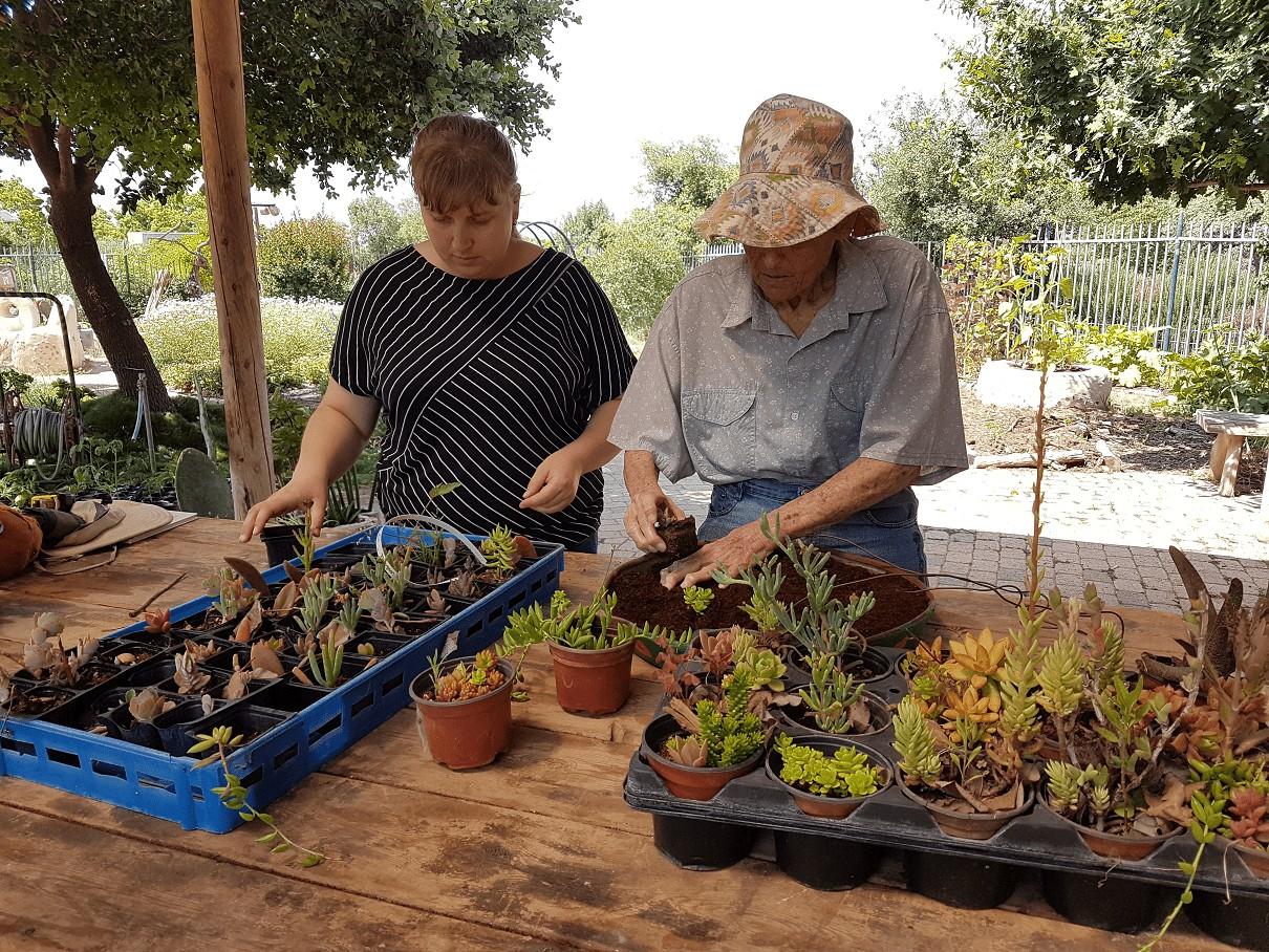פעילות במסגרת תכנית תורמים בגינה