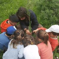 kids-exploring-nature-aspect-ratio-1x1