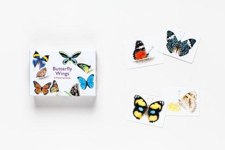 Butterfly Wings open