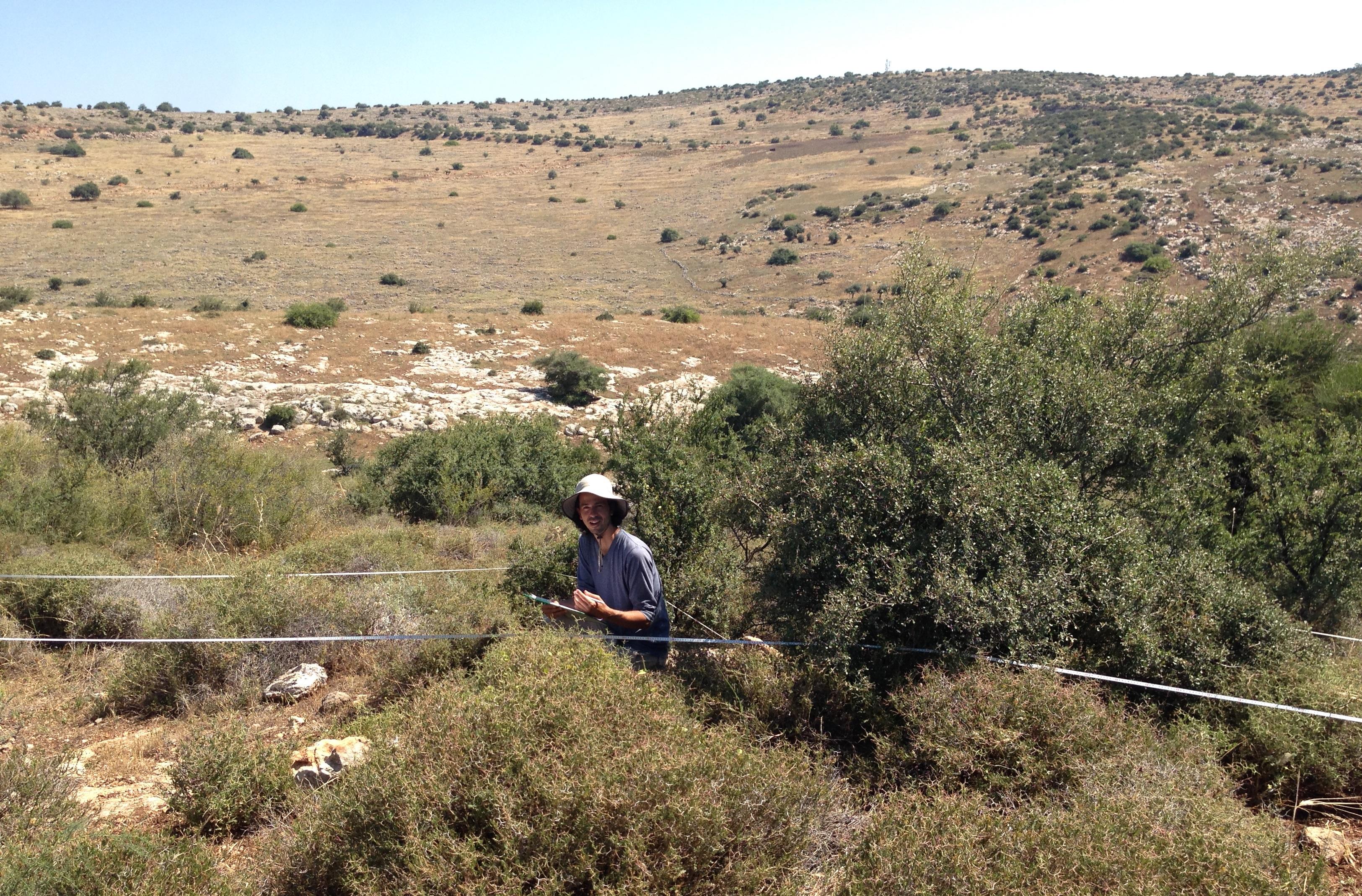 הבוטנאי בר שמש בשטח- צילום יואל חסון
