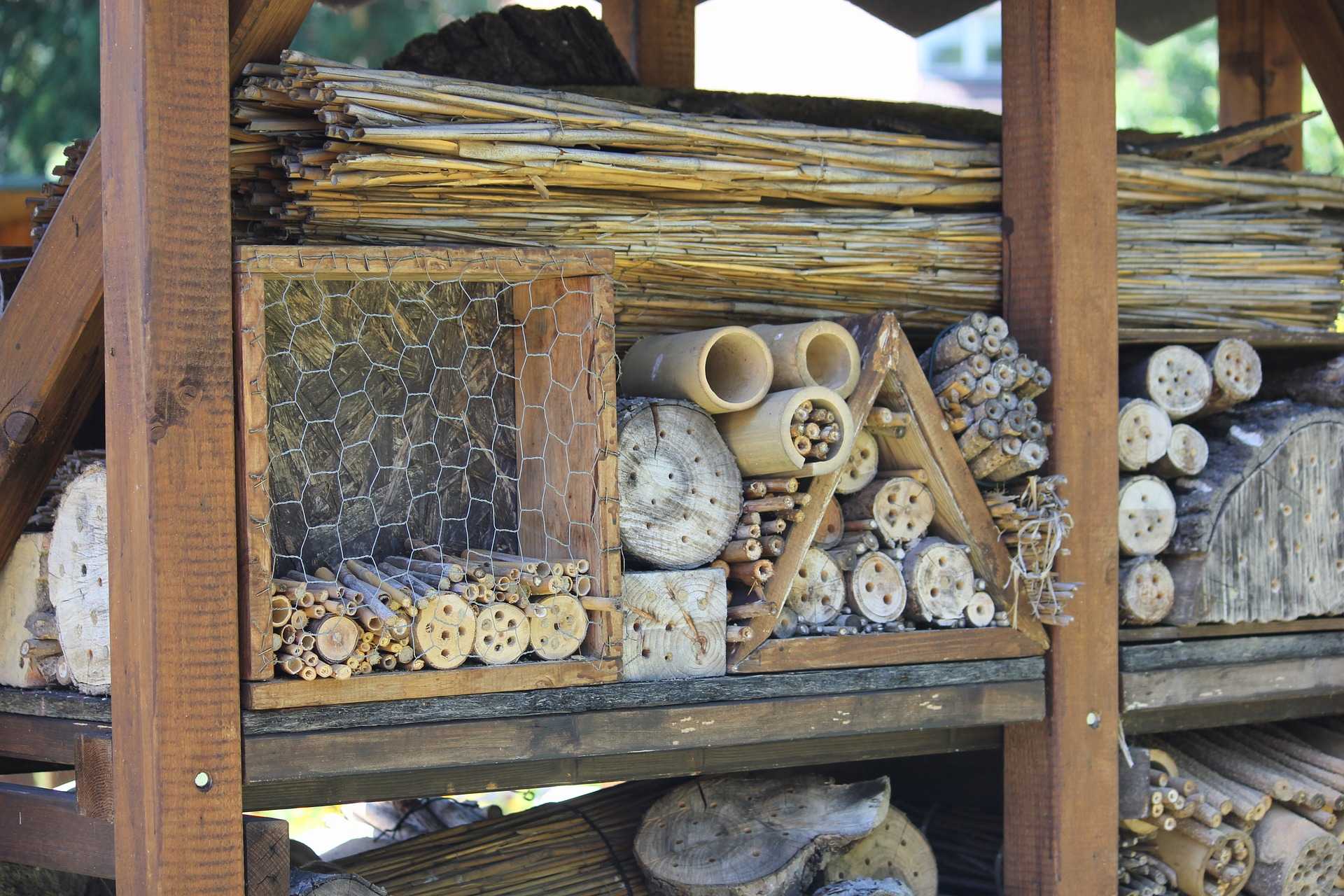 insect-hotel-3571258_1920