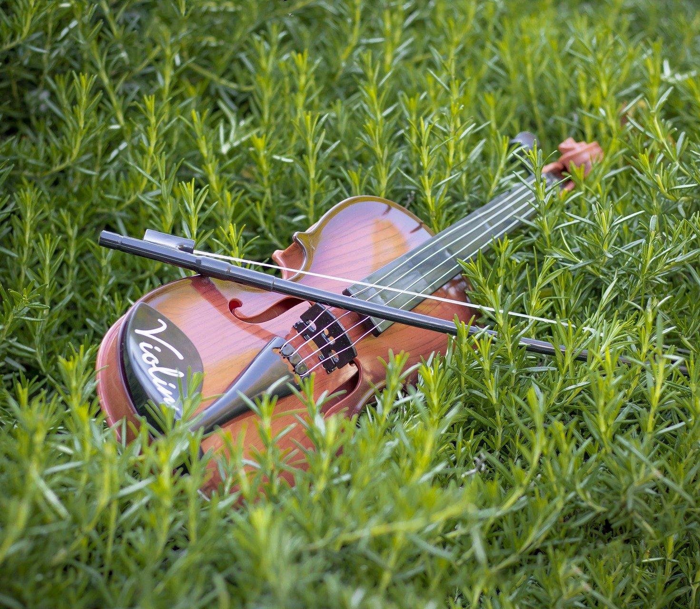 violin-5548761_1920-1-aspect-ratio-39.2x34.1
